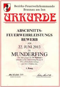 bewerb-munderfing-22062013